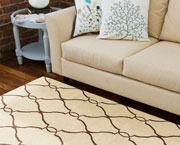Spotless Carpet Cleaning Pleasanton - Area Rug