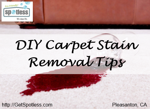 DIY Carpet Stain Removal Tips